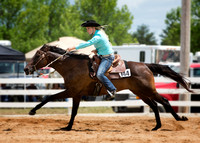 2014 Scott County Fair Horse Show, Sunday, July 27th